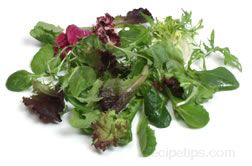 salad greens Glossary Term