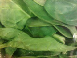 spinach leaves Article