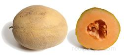 athena melon Glossary Term