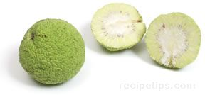 Osage Orange Glossary Term