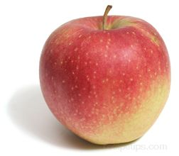 opalescent apple Glossary Term