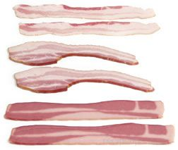 Bacon Glossary Term