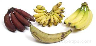 Banana Glossary Term
