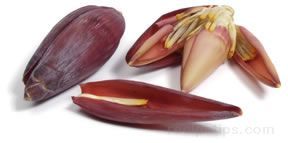 banana flower Glossary Term