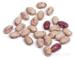 Cranberry Bean Glossary Term