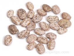 Pinto Bean Glossary Term