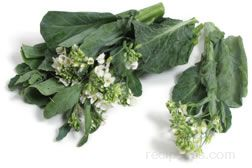 chinese broccoli Glossary Term