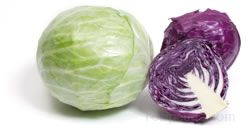 Cabbage Glossary Term