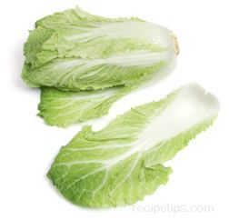 tientsin cabbage Glossary Term