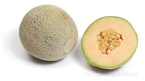 Muskmelon Glossary Term