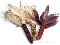 decorative corn Glossary Term
