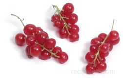 red currant Glossary Term