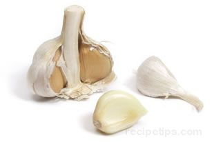 Elephant Garlic Glossary Term