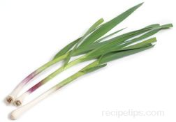 green garlic Glossary Term