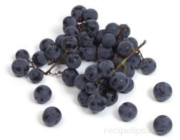concord grape Glossary Term