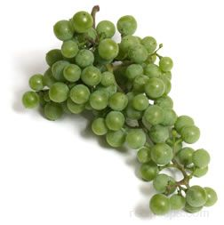 Grape Glossary Term