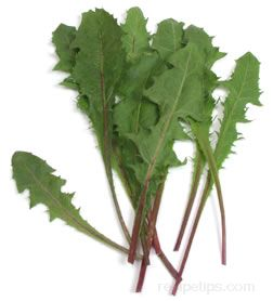 Dandelion Greens Glossary Term