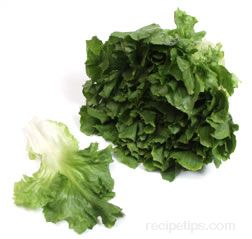 Escarole Glossary Term