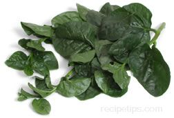 malabar spinach Glossary Term