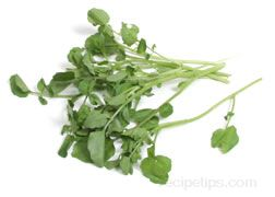 Watercress Glossary Term