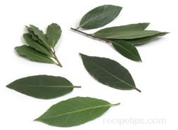 Bay Leaf Glossary Term