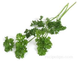 Parsley Glossary Term