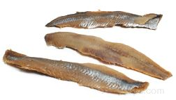 Herring Glossary Term