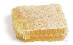 Honeycomb Glossary Term