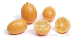 Kumquat Glossary Term