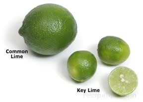 key lime Glossary Term