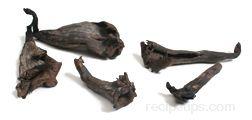 black trumpet mushroom Glossary Term
