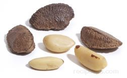 Brazil Nut Glossary Term