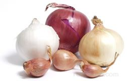 Onion Glossary Term