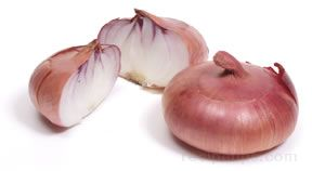 Dry Onion Glossary Term