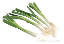 green onion Glossary Term