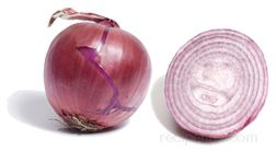 red onion Glossary Term