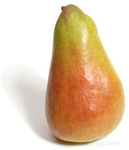 abate fetel pear Glossary Term