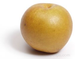 Asian Pear Glossary Term
