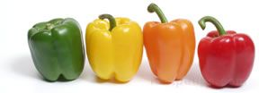 Sweet Pepper Glossary Term