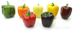 bell pepper Glossary Term