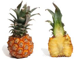 Baby Pineapple Glossary Term