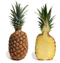 pineapple Glossary Term