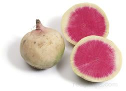Watermelon Radish Glossary Term