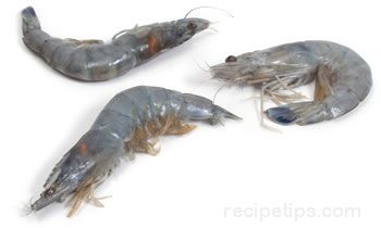 Prawn Glossary Term