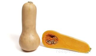 Butternut Squash Glossary Term