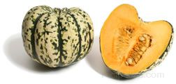 Carnival Squash Glossary Term