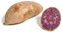 Okinawan Sweet Potato Glossary Term