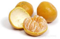 mandarin orange Glossary Term