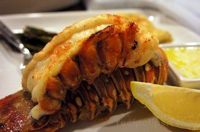 piggyback lobster tails Recipe