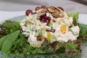 Chicken or Turkey Curry Salad Recipe